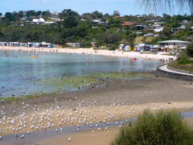 Mills Beach landscape 2012