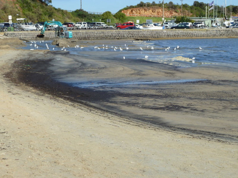 Mothers Beach after dredge spoil dumping