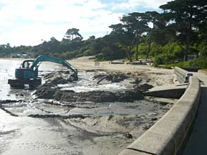 Mothers Beach dredging January 2011