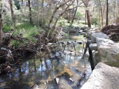 Creek near Green Paddock
